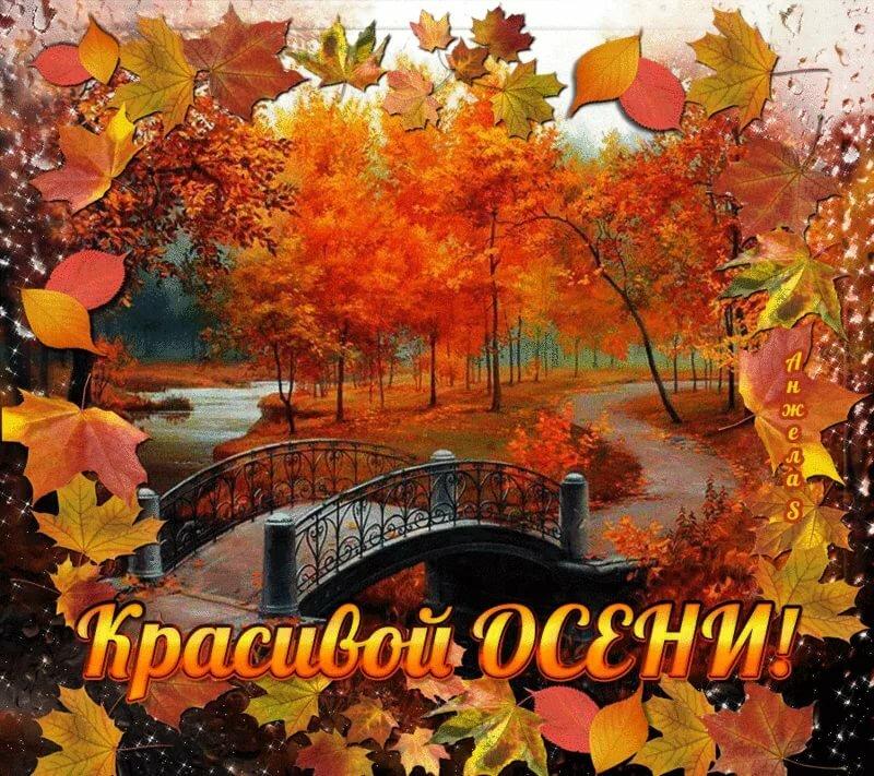 гифка последний день сентября горшок геранью