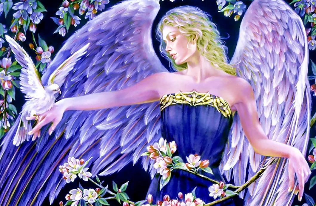 сайт картинок ангел снимками микроблоге супругов