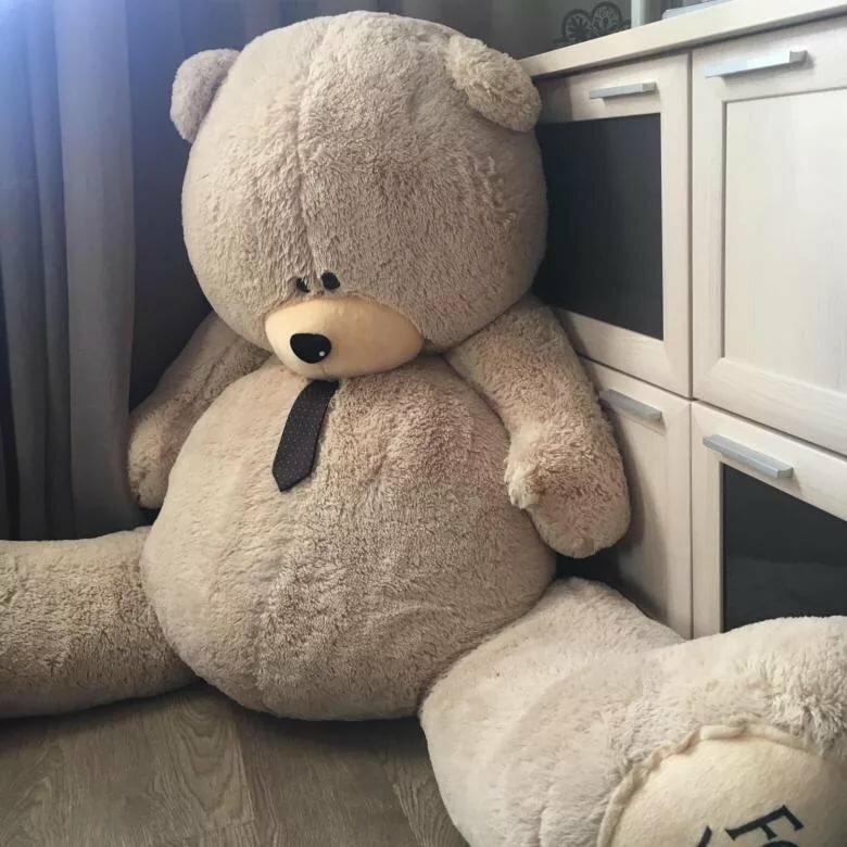 Картинка больших медведей