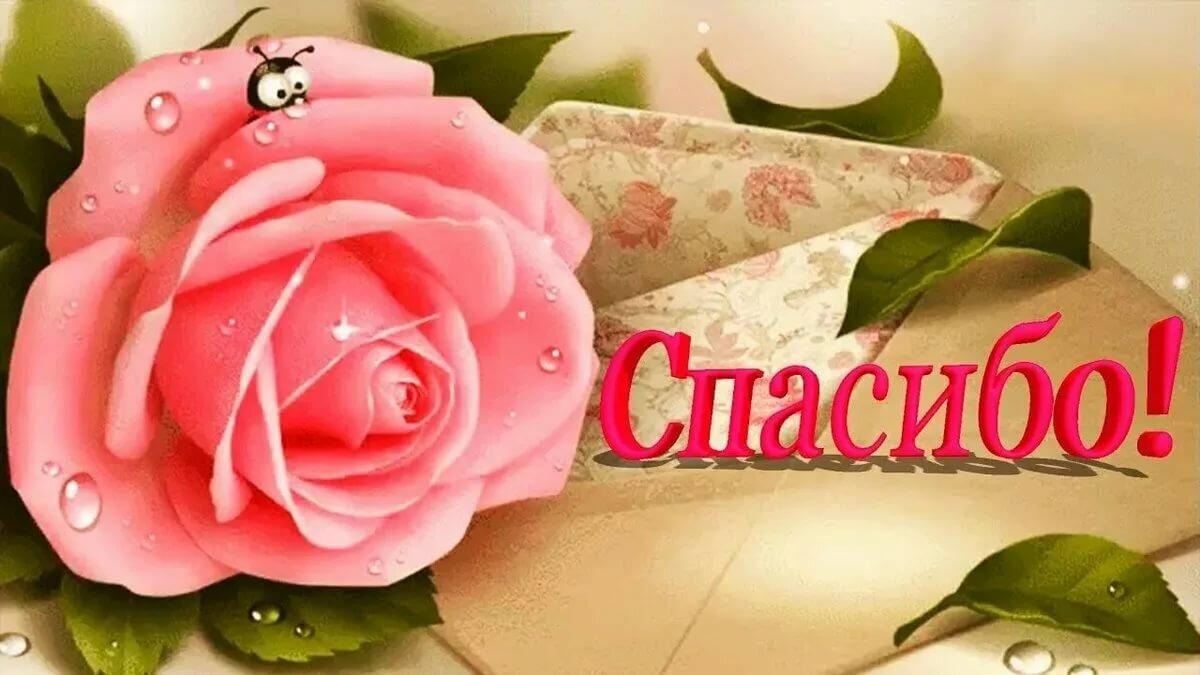 Красивая картинка спасибо за цветы