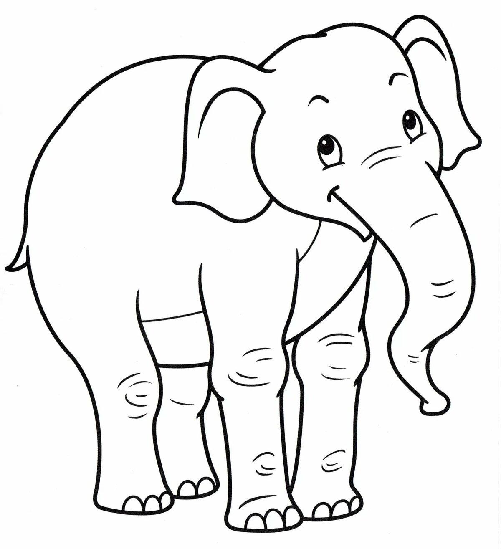Раскраска слоники распечатать картинки агрегатор вакансий