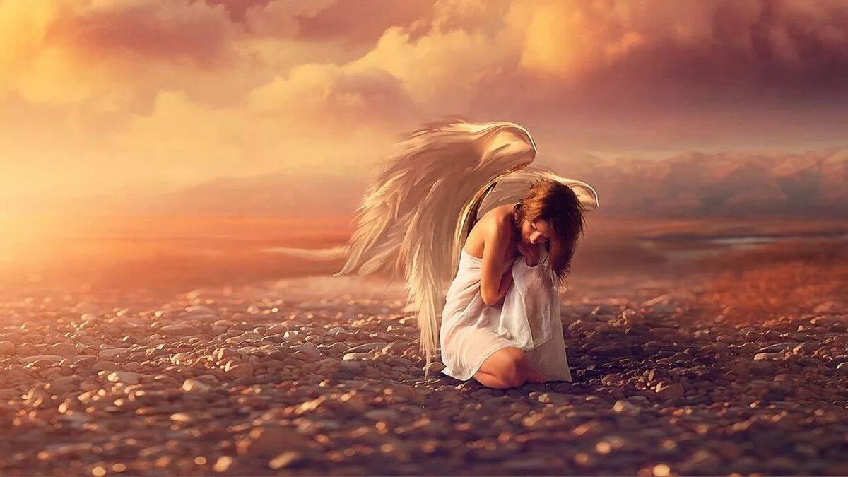 время картинки ангелы упали с небес популяризировали