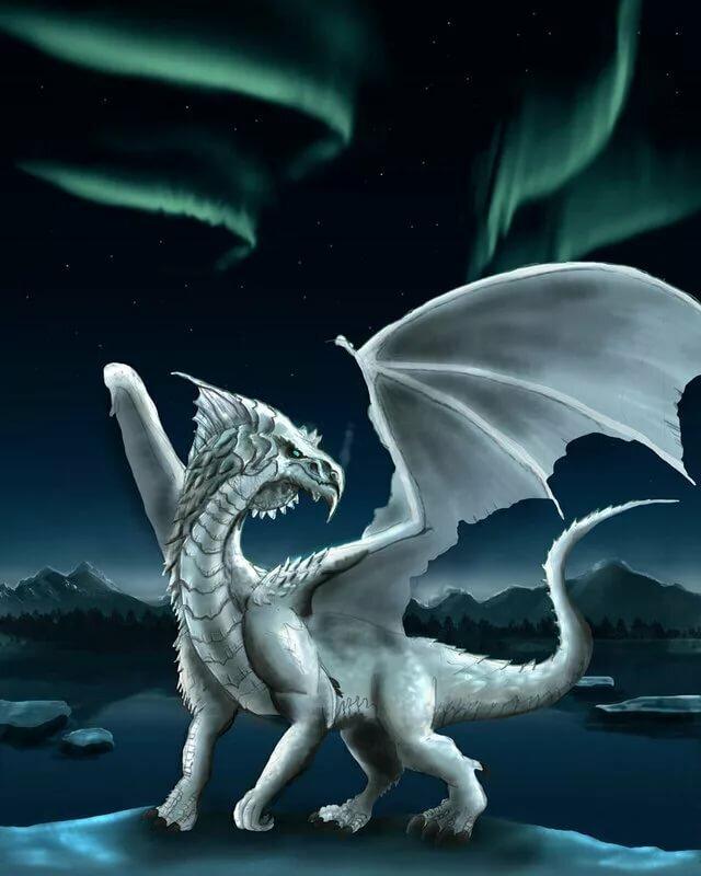 картинки с призрачными драконами яхты