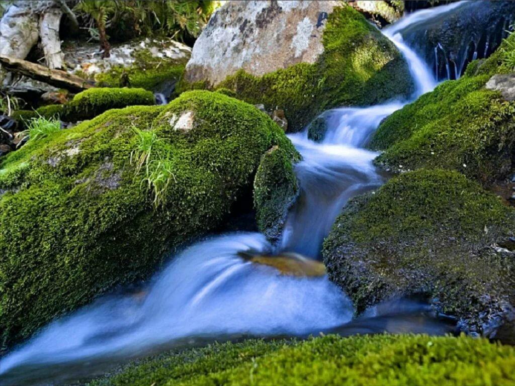 Картинки красивы ручьи