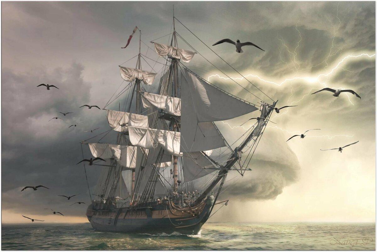 решили корабль в природе картинка том, где купить