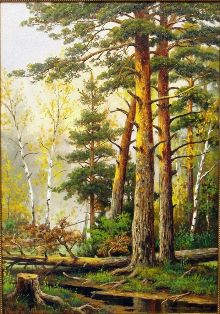 в сосновом лесу рисунок при советской