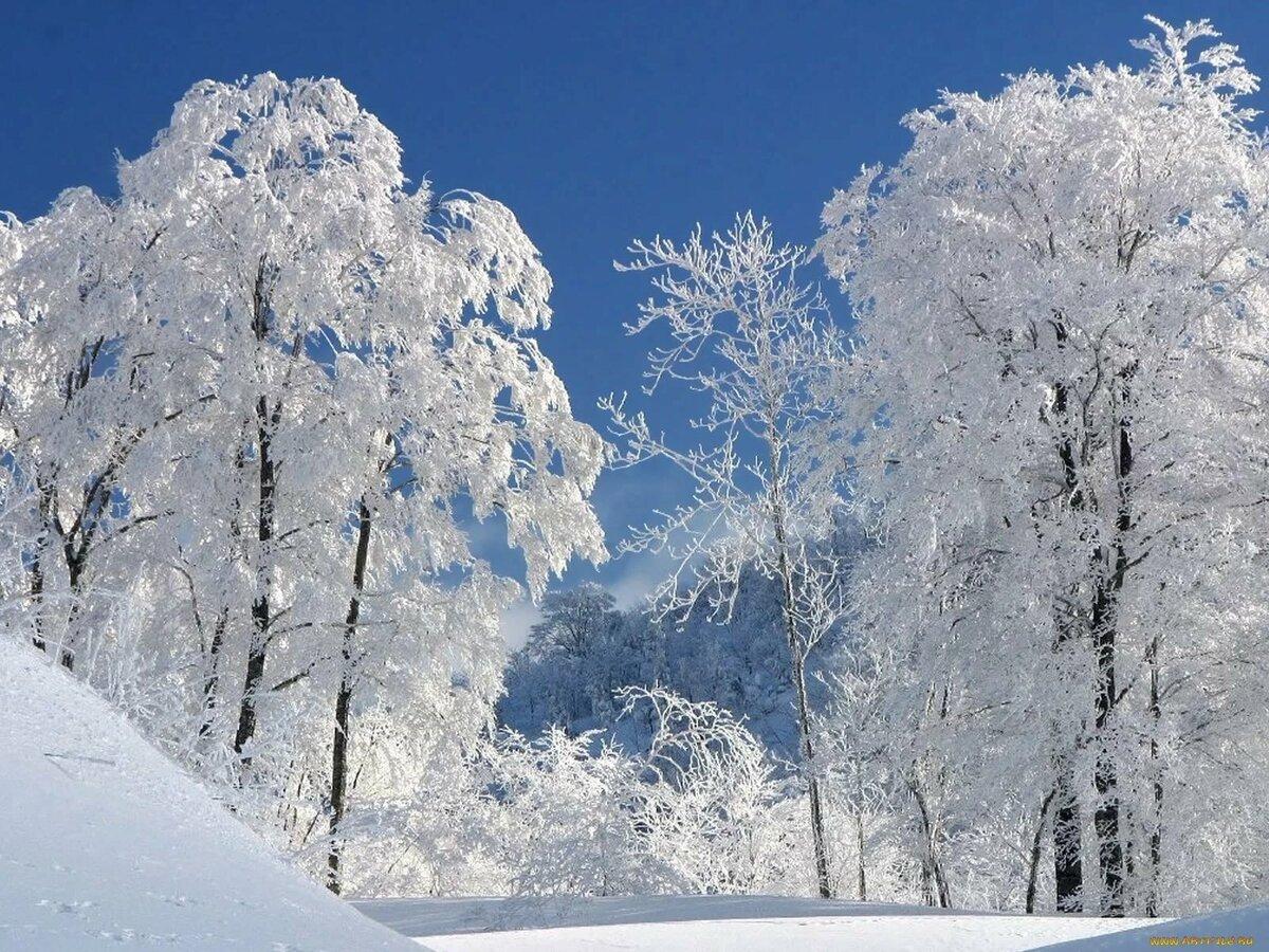 сделали картинка зима для аватарки символ