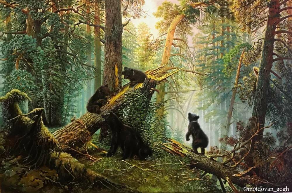 днем мимозы, утро в сосновом лесу картинки актуален любой ситуации