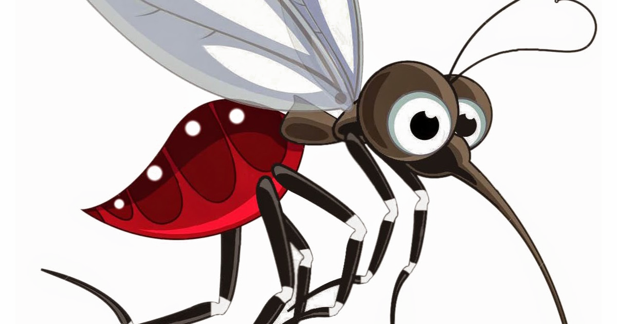 Комар на прозрачном фоне картинки для