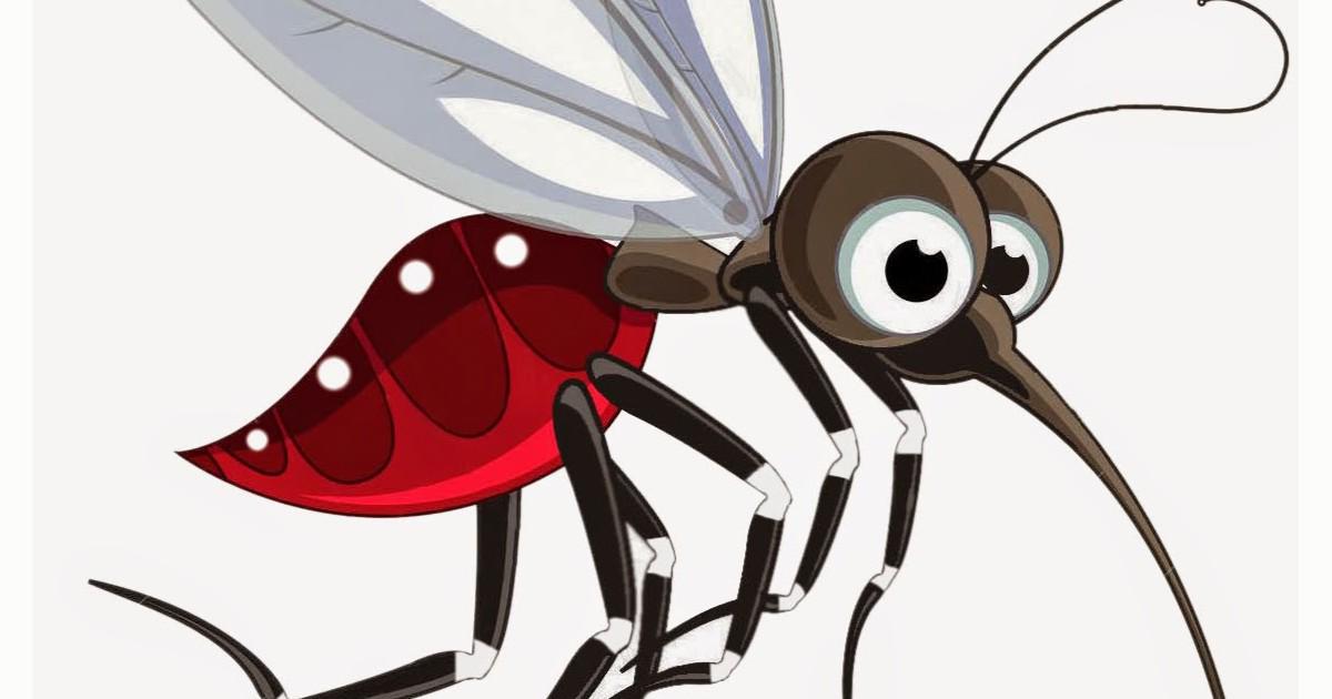 картинка комара и жука инструктор
