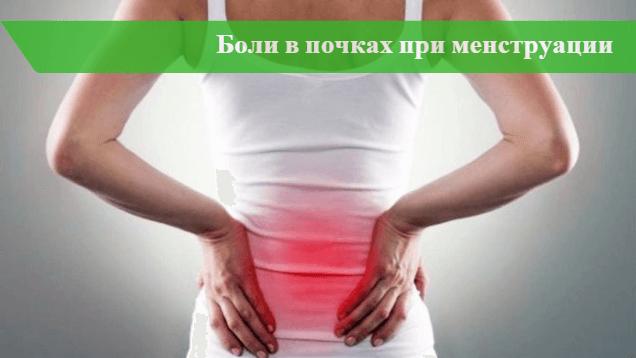 Болят почки при месячных - 5 причин почему болезненных ощущений ...
