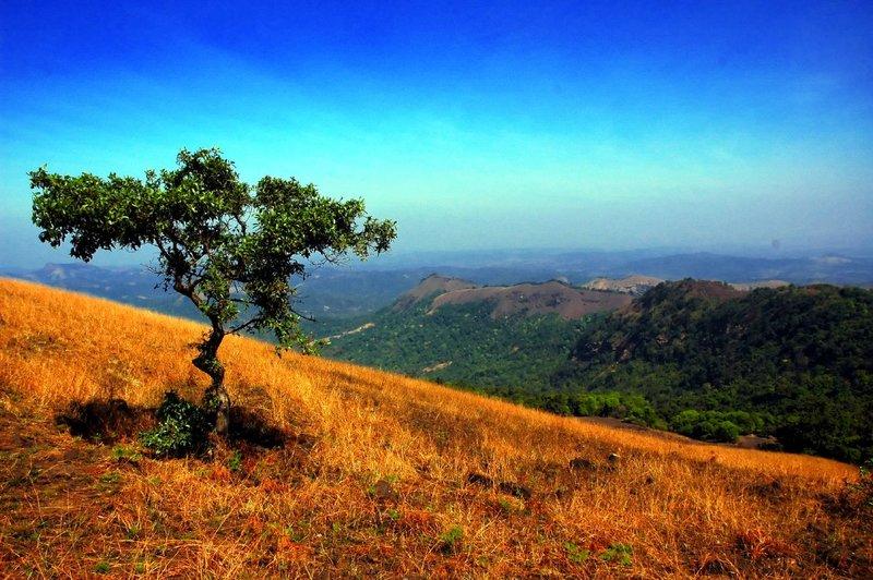 Индия | TouristMaker scenery india