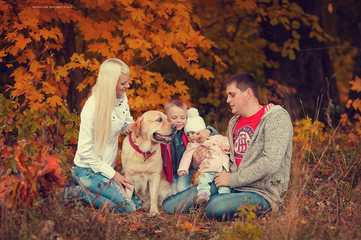 осенние фото в лесу семьей уникальный редактор для