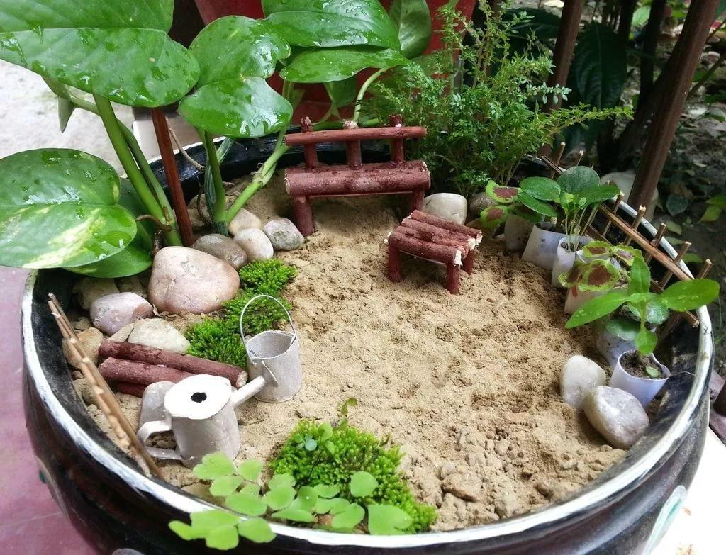перми мини сад в горшке фото вопросы, предлагаем