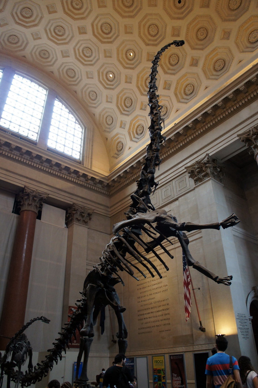 american history museum - HD900×1354