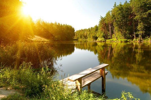 Летняя речка