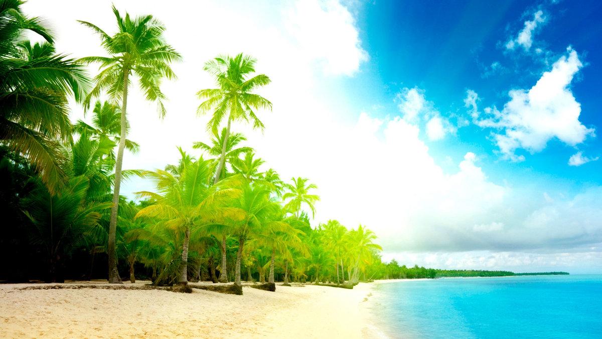 Лето фото красивые природа море, открытки открытка