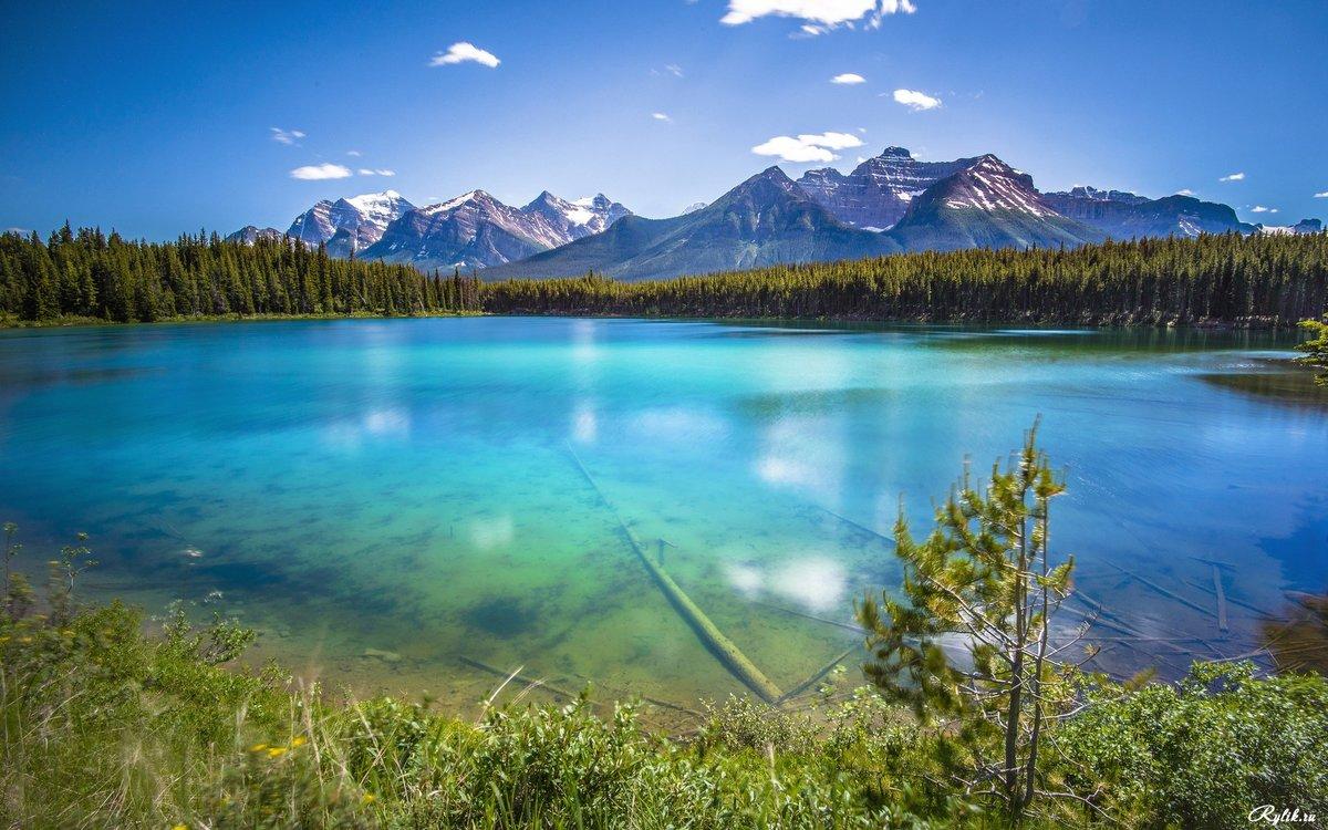Фото горы озеро лес