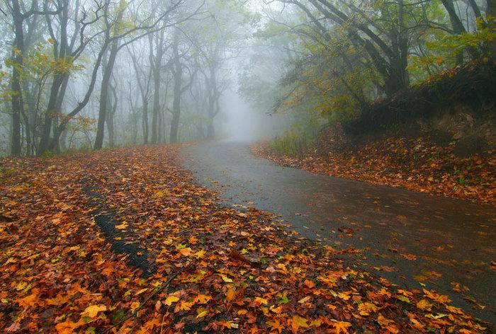 В октябре дожди вернутся на Южный Урал