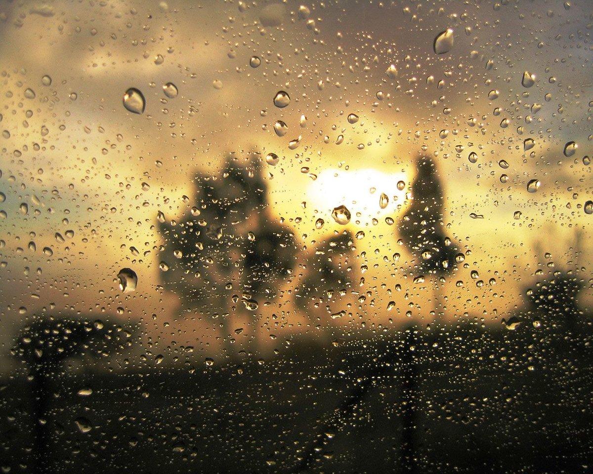 Марта 2016, открытки дождь и солнце
