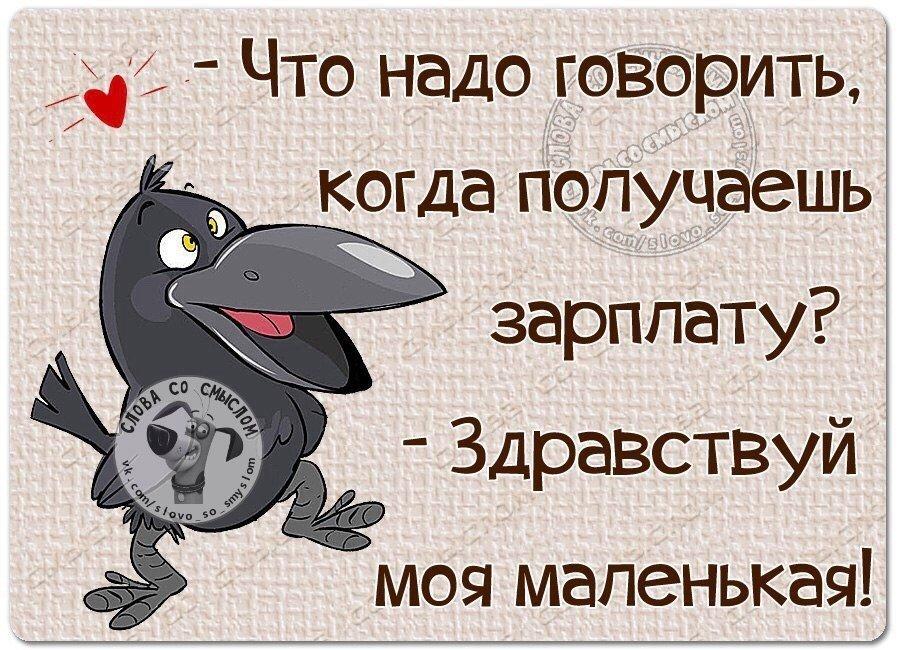 Георгиевской ленточкой, умные смешные картинки со смыслом