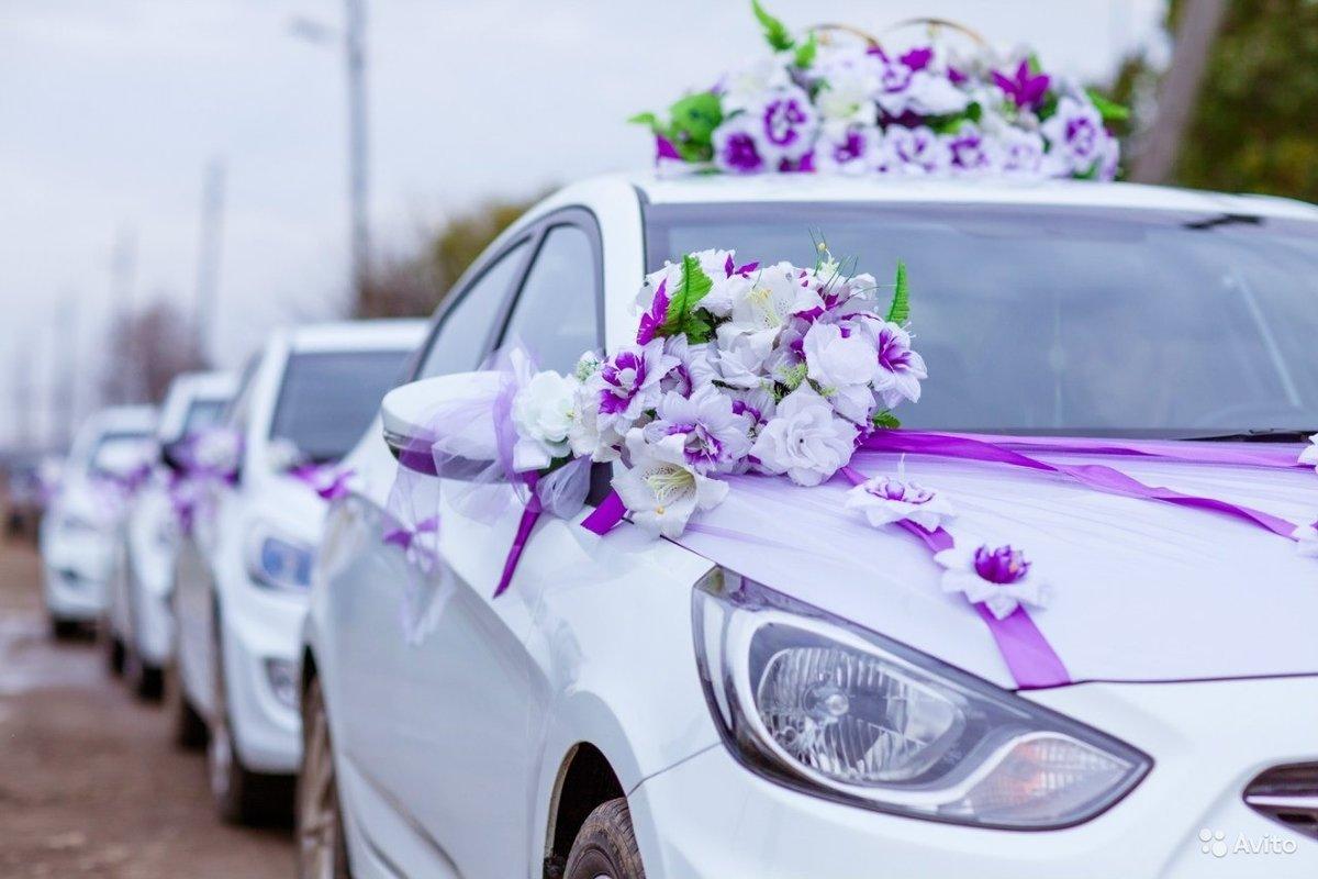 Цветов, купить цветы в житомире машину