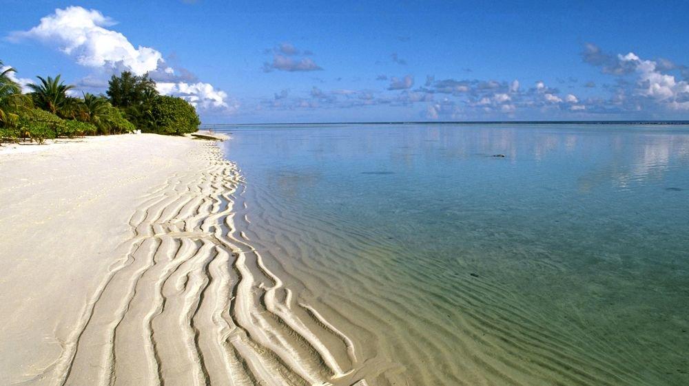 Пляж в индии 55