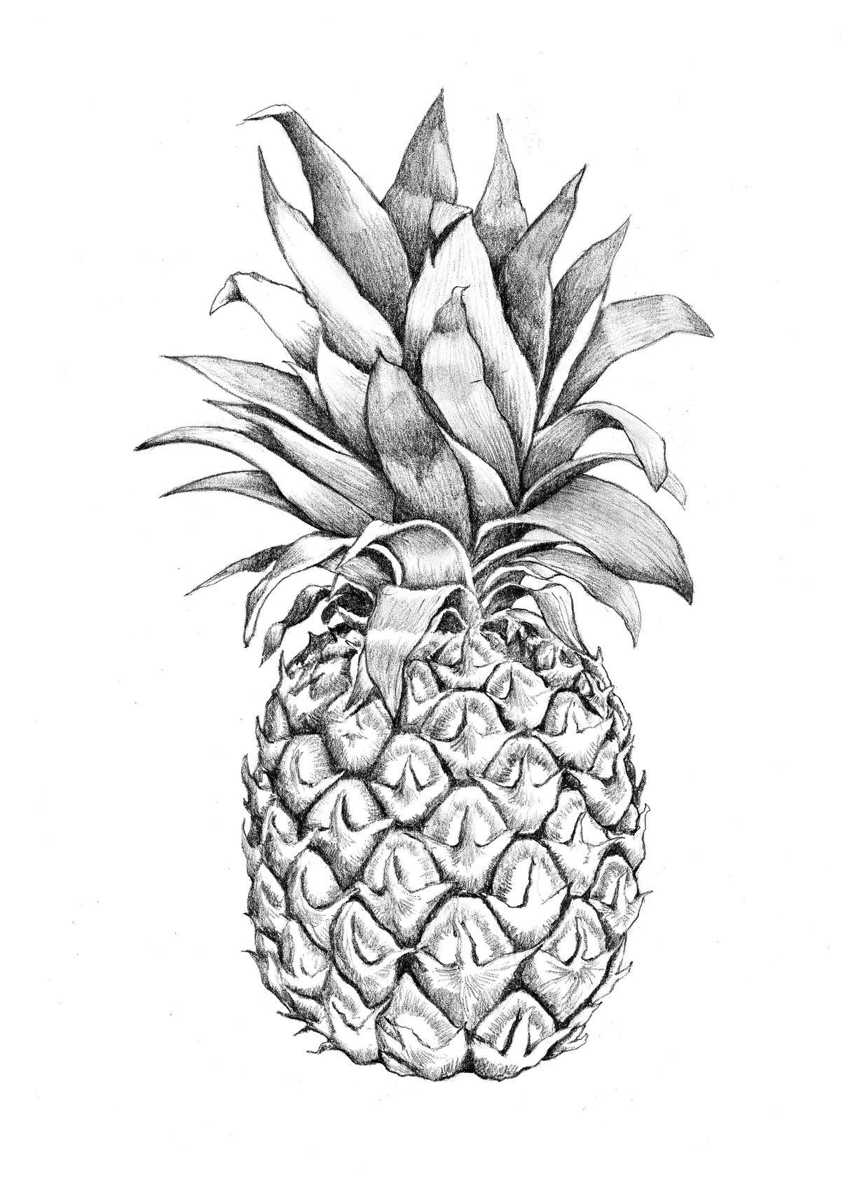 ваш ананас черно белый картинки возможно через