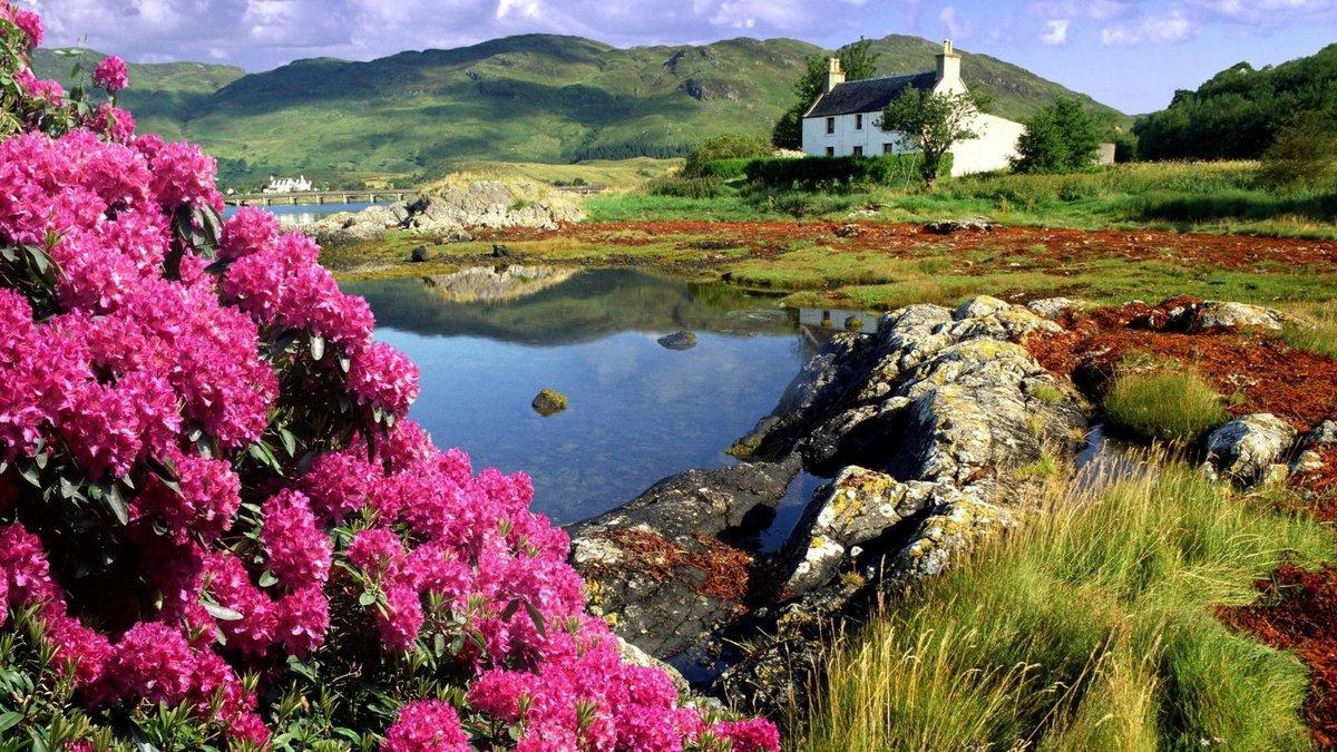 Фото природы на открытках