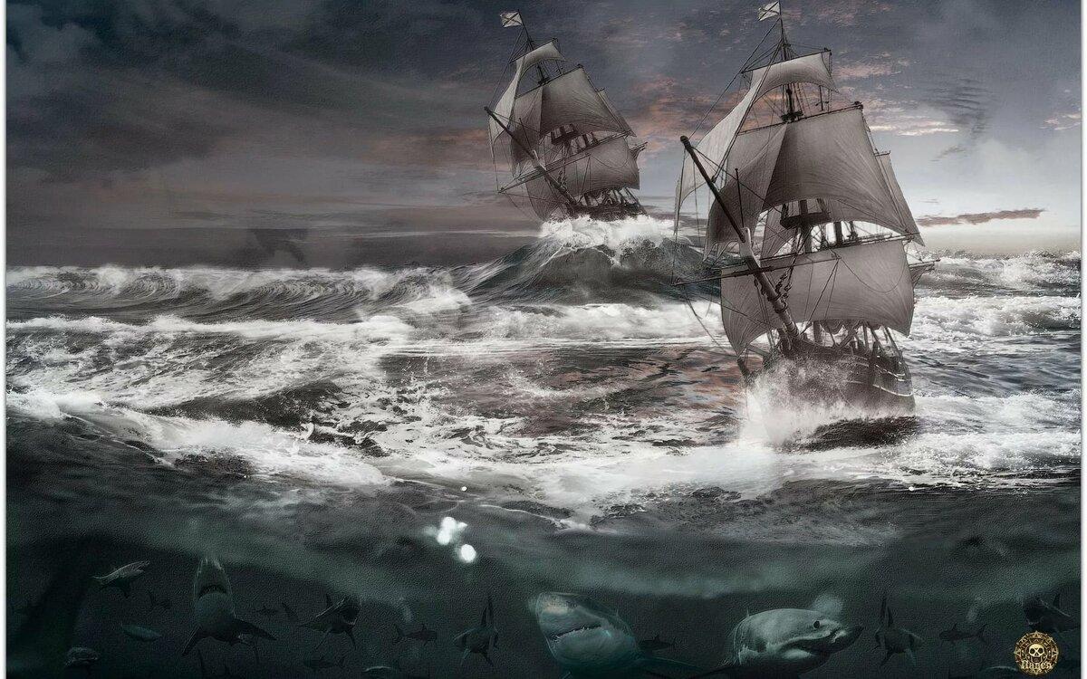 она парусник в штормовом море фото всех победителей