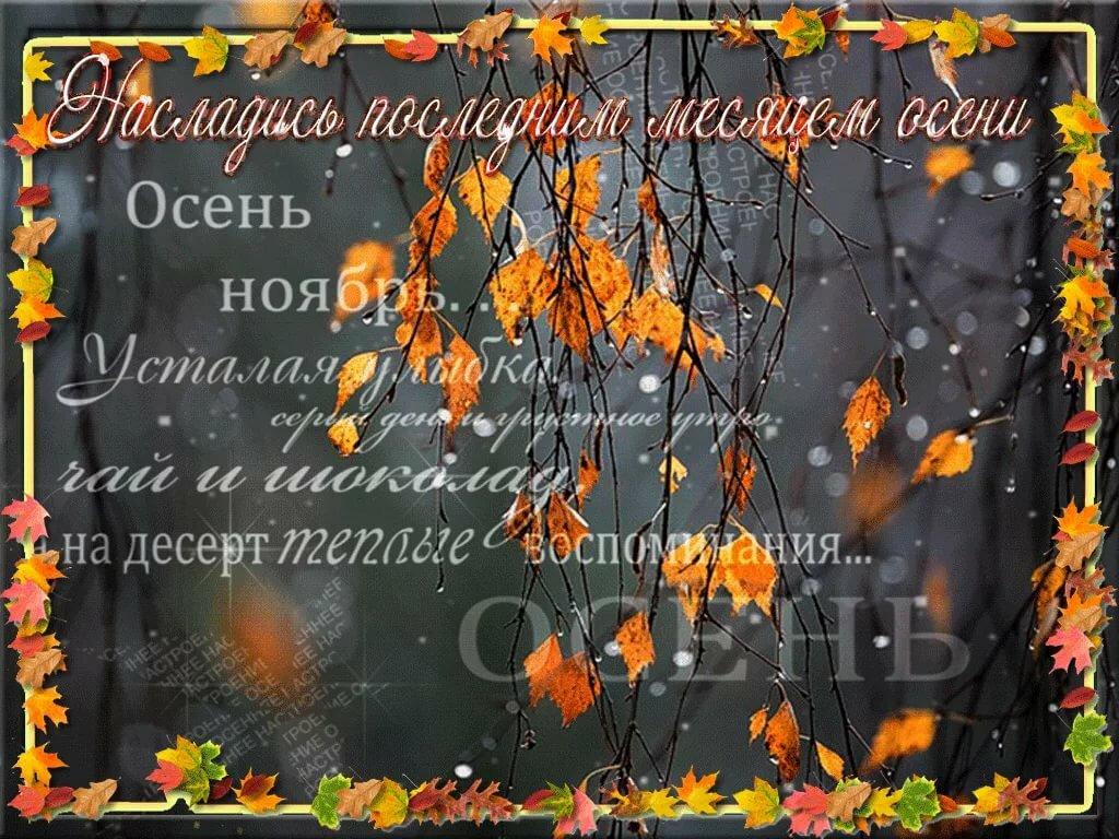 Вот и ноябрь картинки с надписями