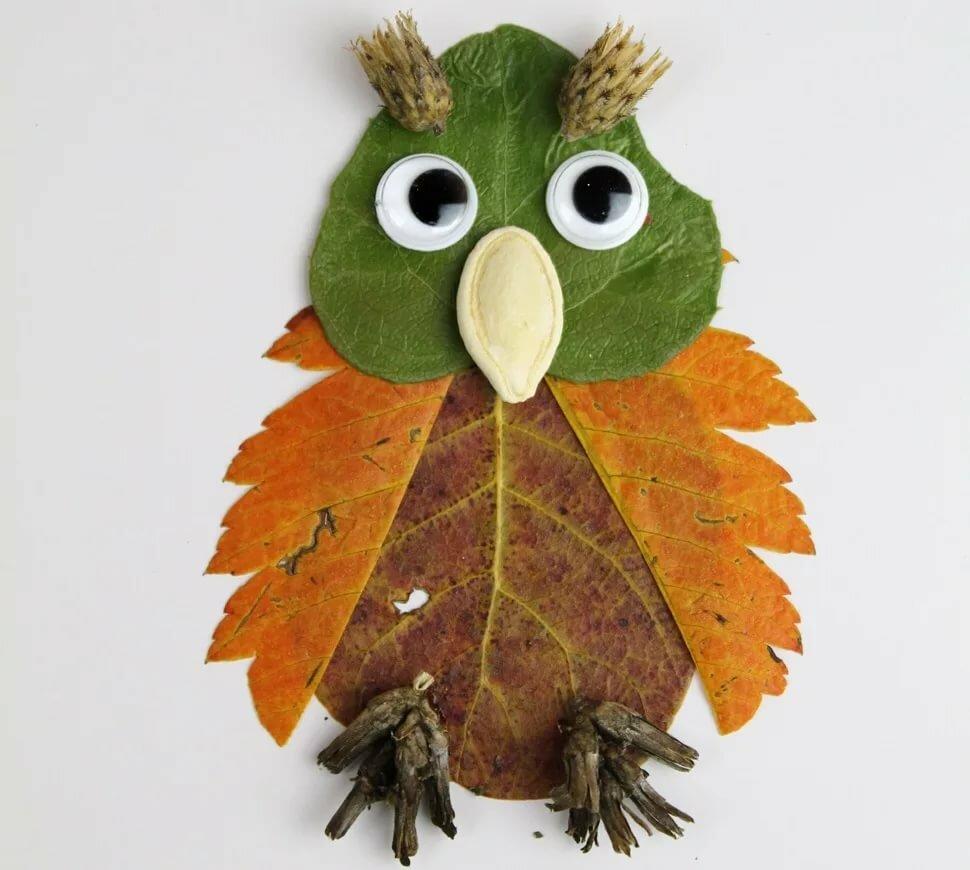 рисунки из листьев сова сможет
