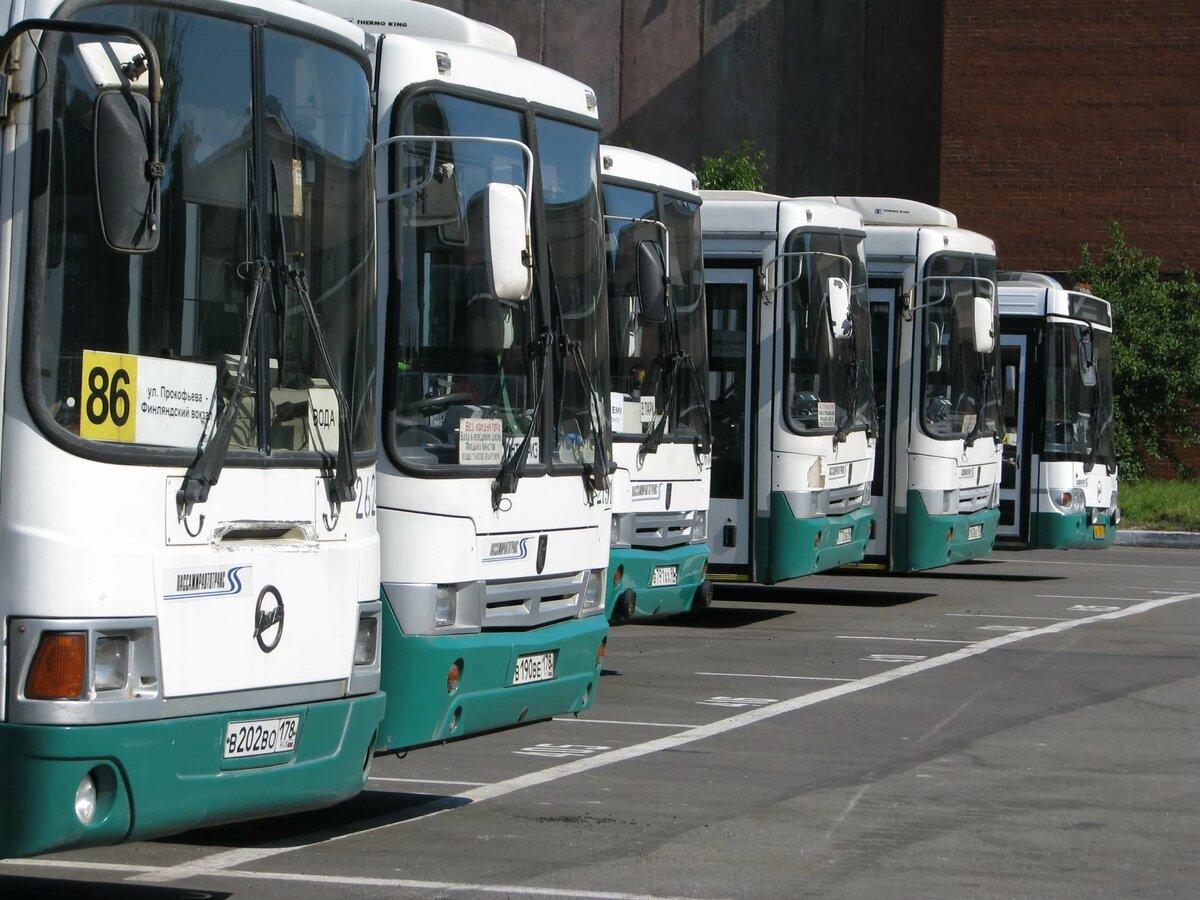 автопарк автобусов картинки применяют всех