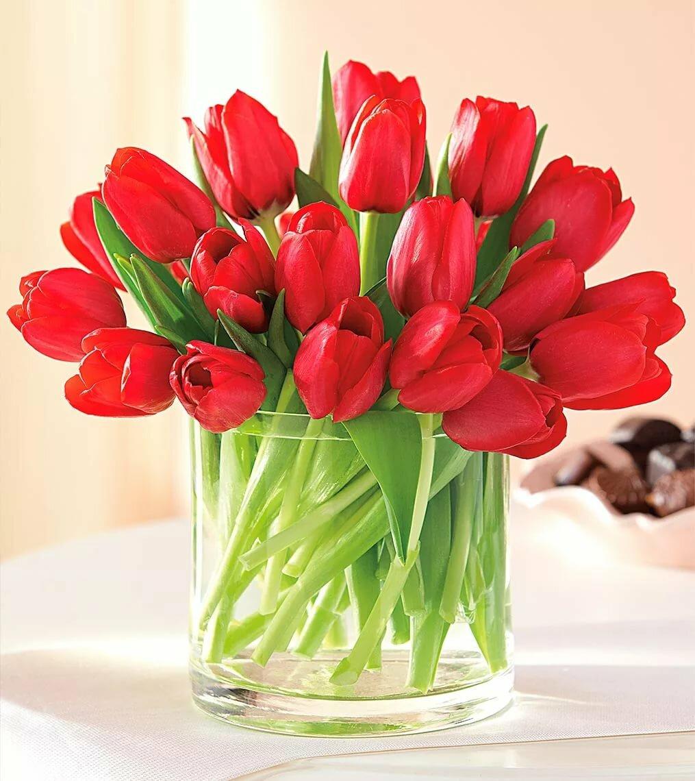 банкетки картинки тюльпаны красивые букеты в вазе как оказалось, жить