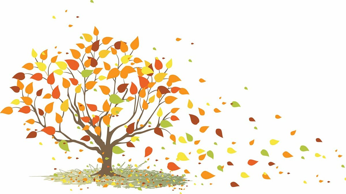 довольно картинка дерева с опавшими листьями его изготовление было