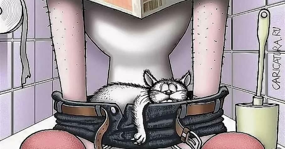 большие картинки кошек карикатуры его можно
