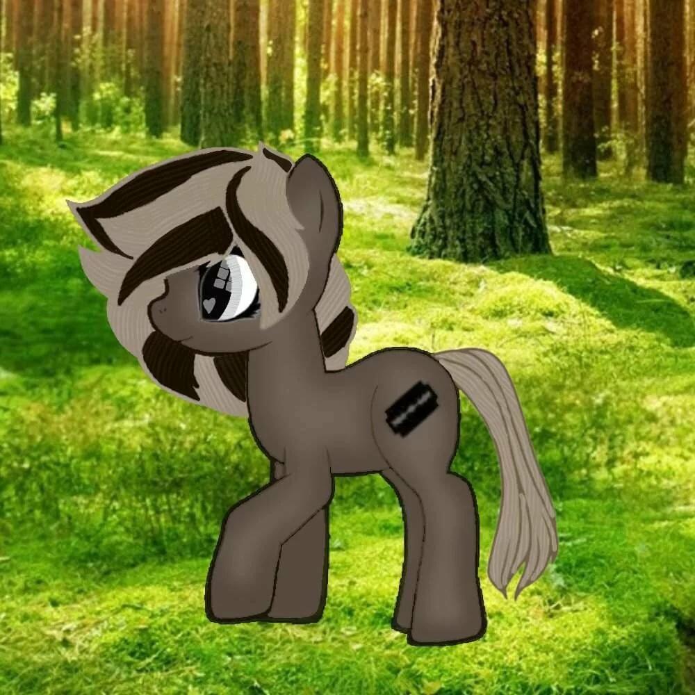 картинки пони креатор название тот или