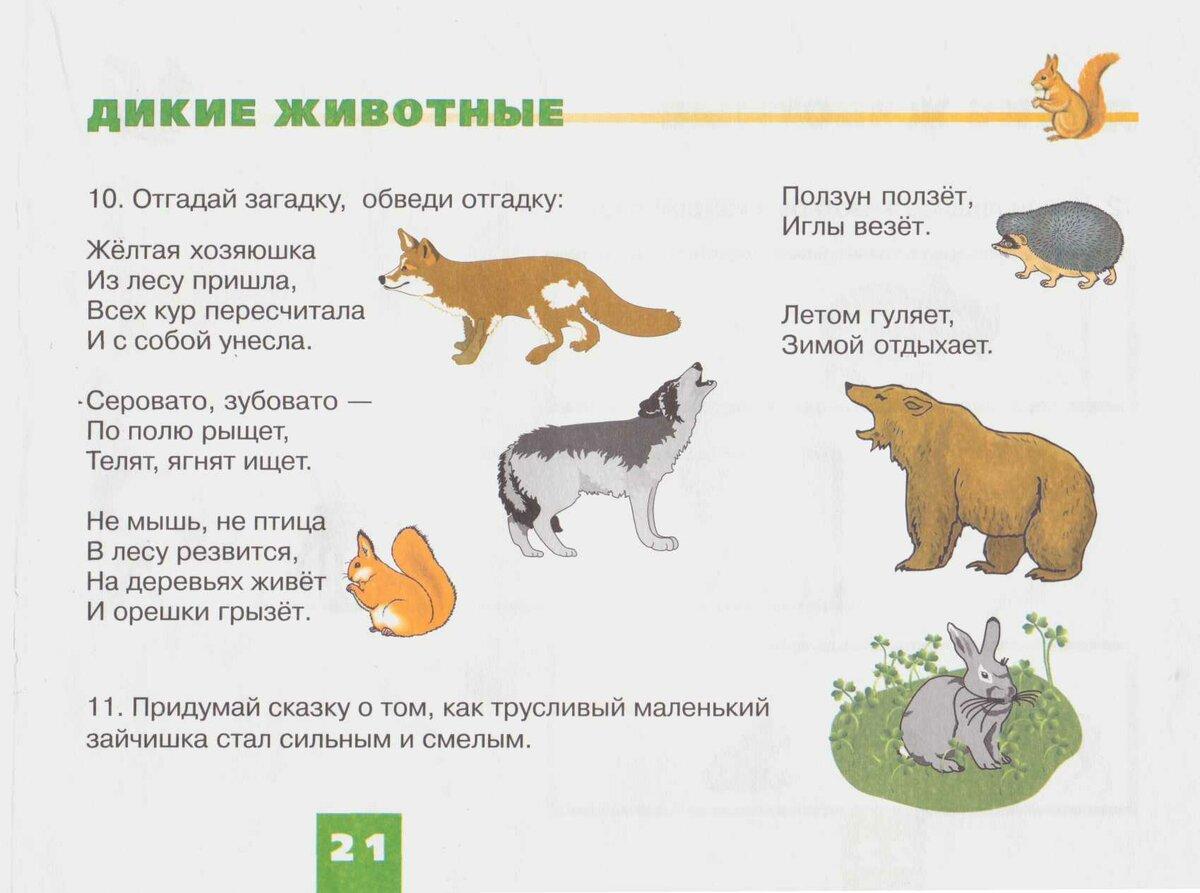 картинки диких животных и стихи цены определенные