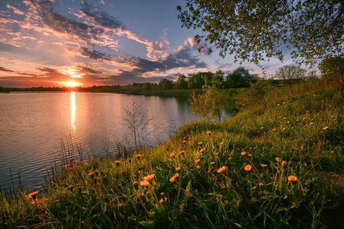 лето закат фото бесплатную гарантийную чистку