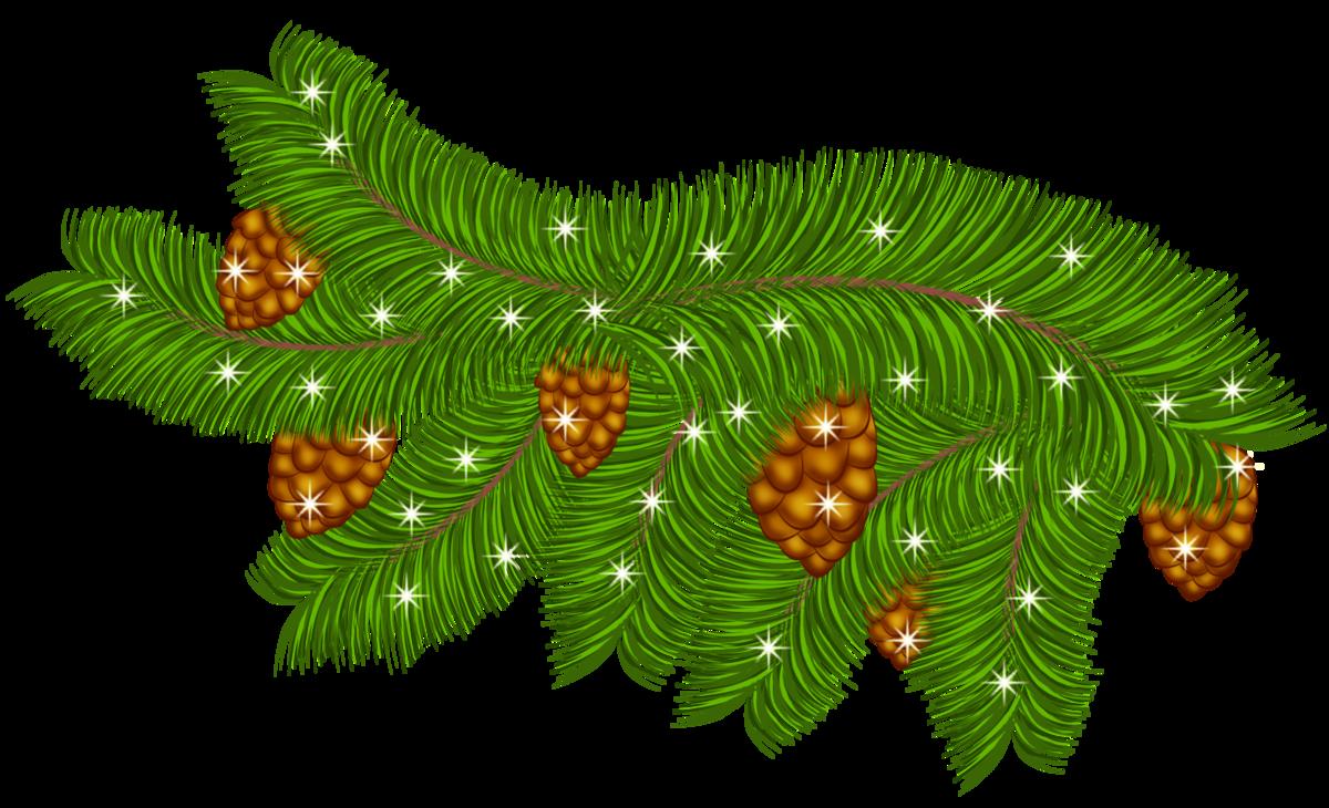 Картинка веточки новогодней