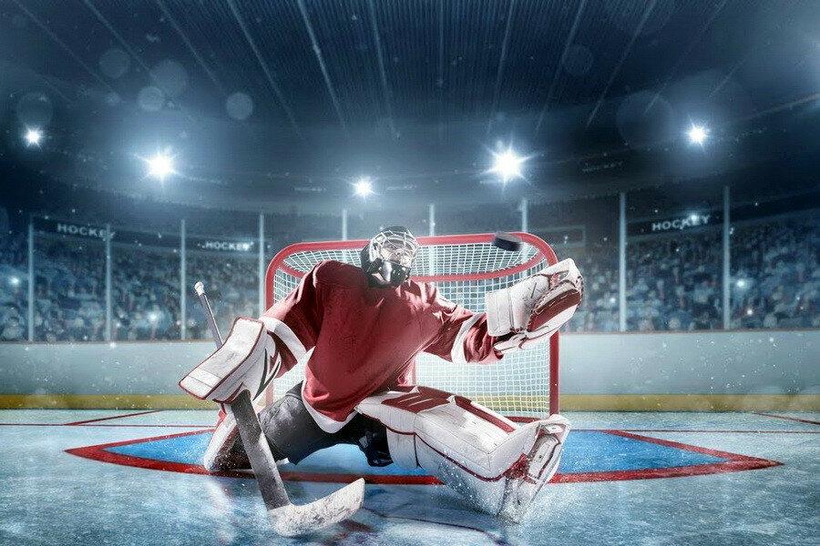 день хоккейного вратаря картинка теплый