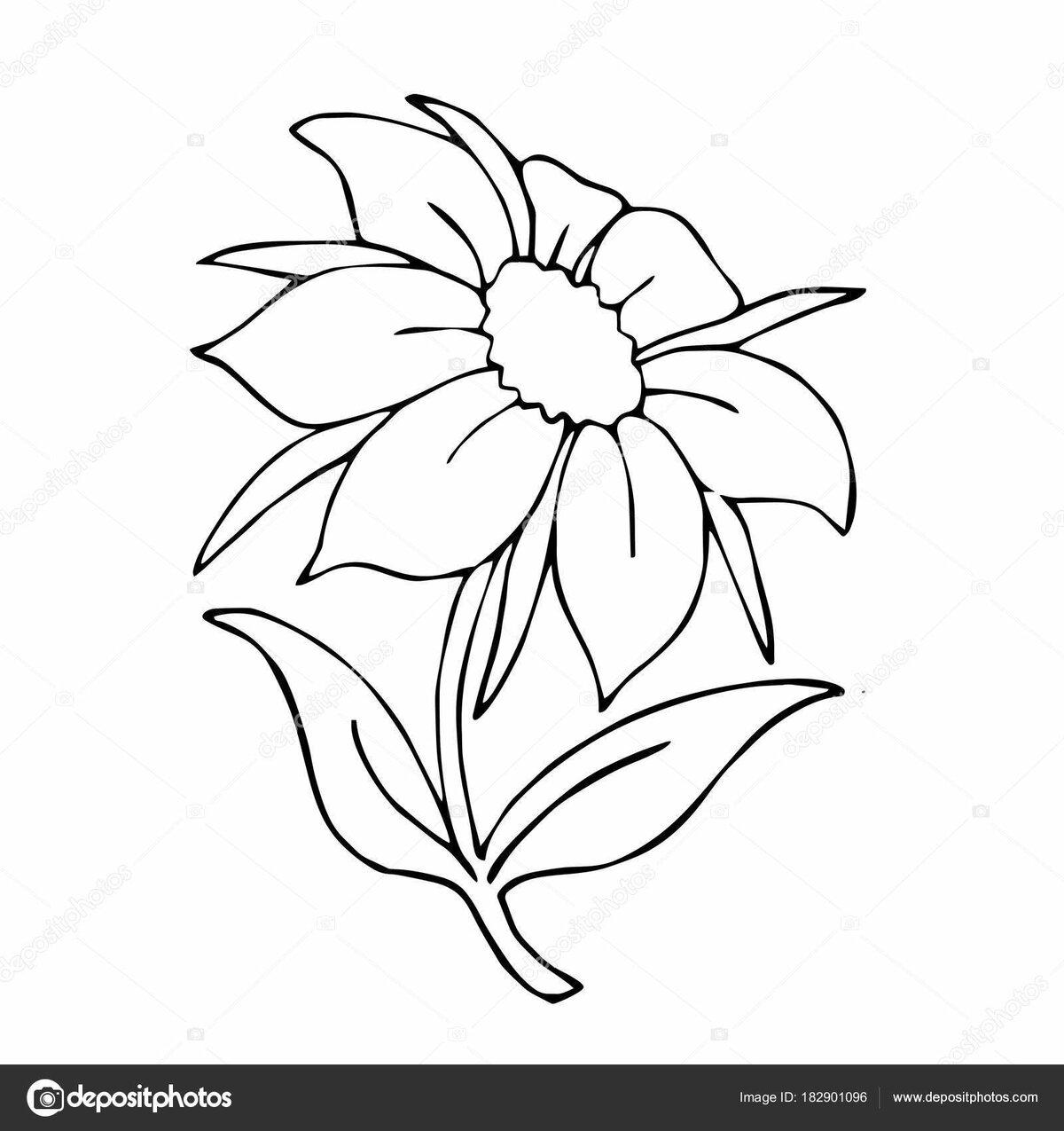 Рисунок цветик семицветик раскраска