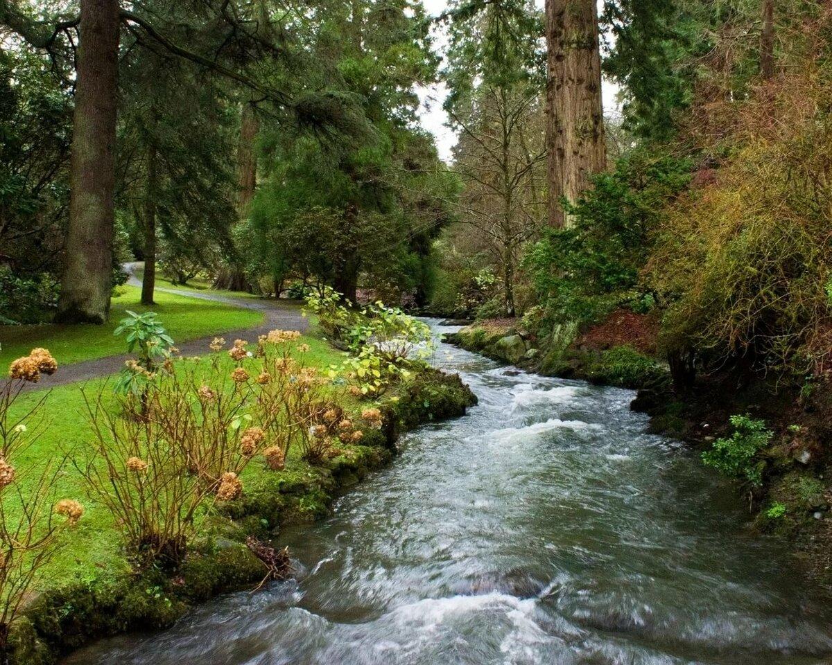 Картинка с изображением ручья