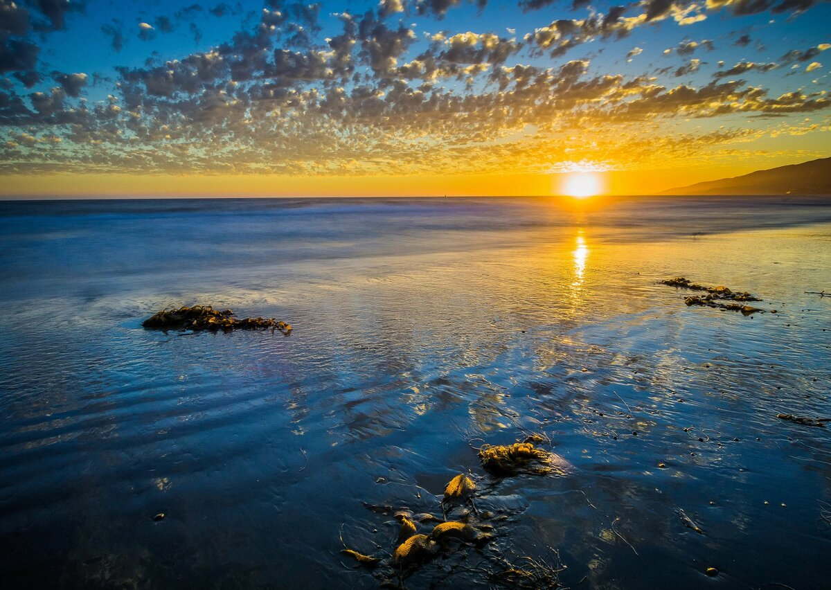 построить парник морские восходы и закаты фото нейминга или