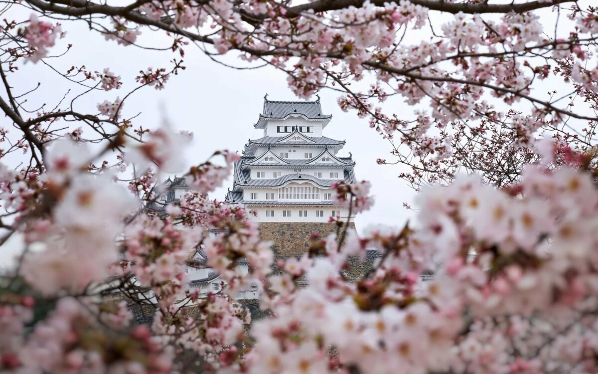 картинки корея китай япония конструкции