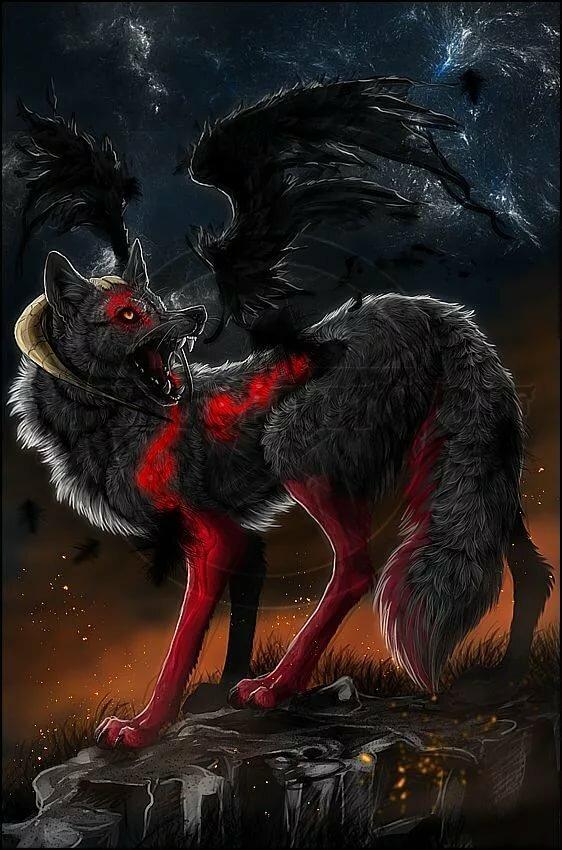 Картинки красные и черные волки