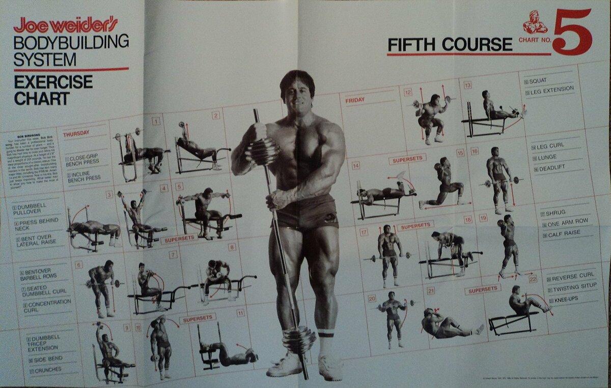 потом тренировочный курс бодибилдинга с картинками видом деятельности компании