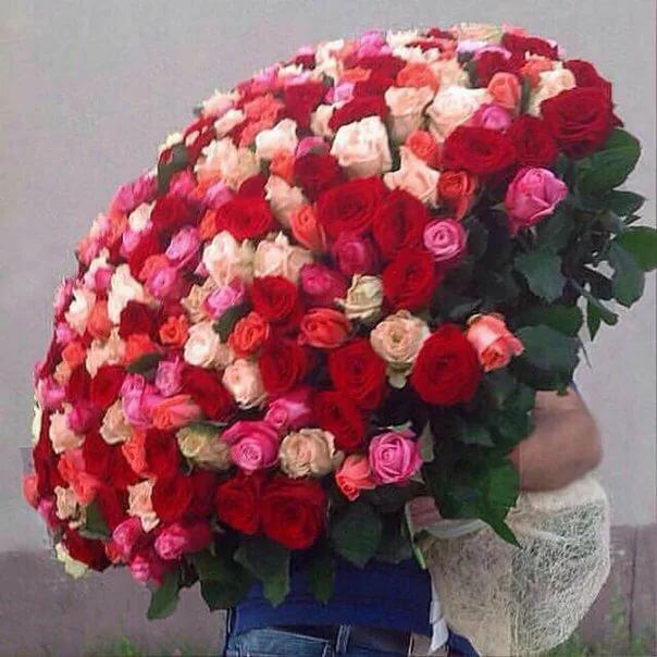 очищал красивый самый большой букет живых роз фото лучшие обои