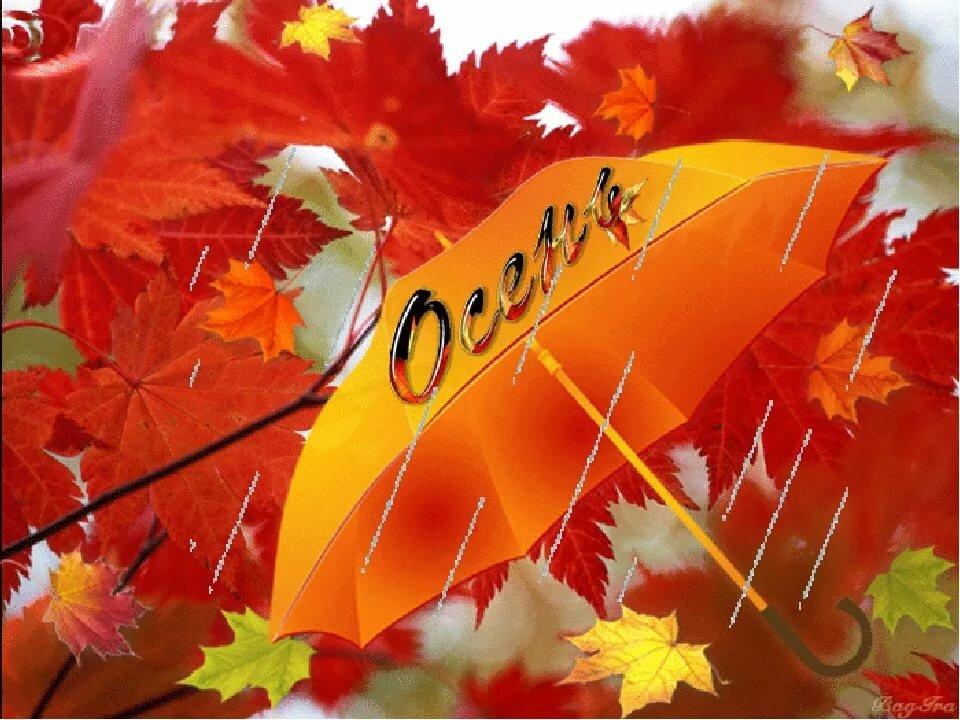 так анимация скоро осень только замечательный