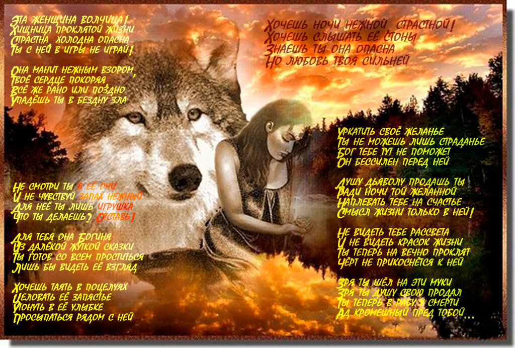 портила большое фото с волком и стихами парад командирский